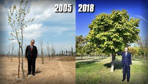 Başkan Kocaoğlu'nu duygulandıran fotoğraf karesi  O ağacın altında