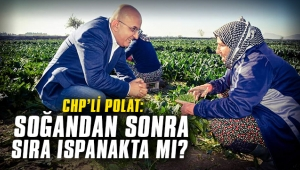 CHP'li Polat: