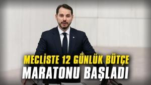 Meclis'te 12 günlük bütçe maratonu başladı