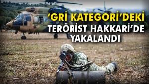'Gri kategori'deki terörist Hakkari'de yakalandı