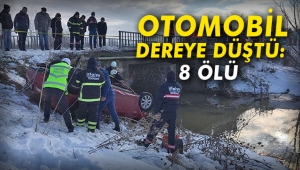 Otomobil dereye düştü: 8 ölü