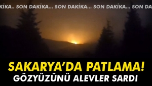 Sakarya'da patlama! Gökyüzünü alevler sardı...