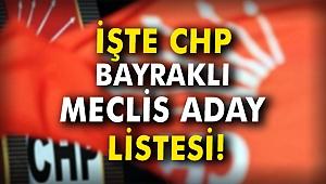 İŞTE CHP BAYRAKLI MECLİS ADAY LİSTESİ
