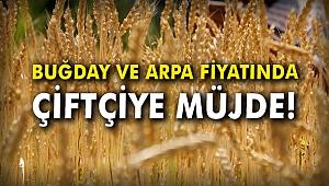 Buğday ve arpa fiyatında çiftçiye müjde!