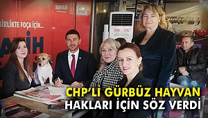 CHP'li Gürbüz 'Hayvan Hakları' için söz verdi