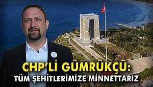 CHP'li Gümrükçü: Tüm şehitlerimize minnettarız