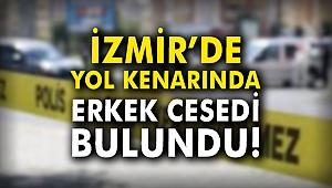 İzmir'de yol kenarında erkek cesedi bulundu