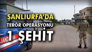 Şanlıurfa'da terör operasyonu: 1 Şehit