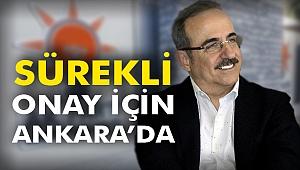 Sürekli, Onay için Ankara'da