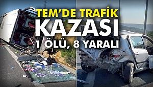 TEM'de trafik kazası: 1 ölü, 8 yaralı
