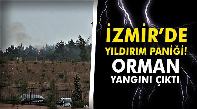 İzmir'de yıldırım paniği! Orman yangını çıktı