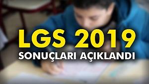 LGS 2019 sonuçları açıklandı