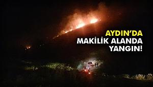 Aydın'da makilik alanda yangın!