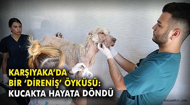 Karşıyaka'da bir 'Direniş' öyküsü: Kucakta hayata döndü