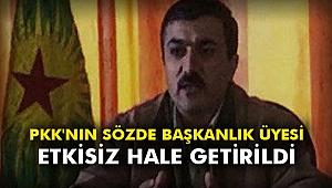 PKK'nın sözde başkanlık üyesi etkisiz hale getirildi