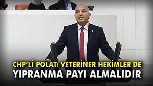 CHP'li Polat: Veteriner hekimler de yıpranma payı almalıdır
