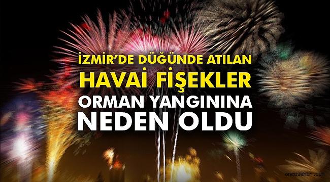 İzmir'de düğünde atılan havai fişekler orman yangınına yol açtı