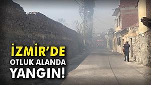 İzmir'de otluk alanda yangın!
