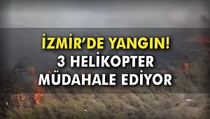 İzmir'de yangın! 3 helikopter müdahale ediyor