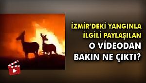 İzmir'deki yangınla ilgili paylaşılan o videodan bakın ne çıktı?