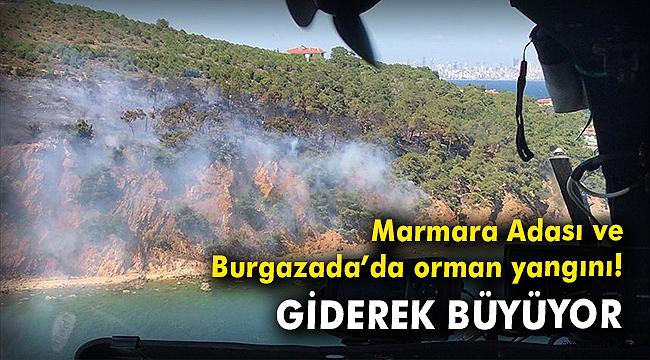 Marmara Adası ve Burgazada'da orman yangını! Giderek büyüyor