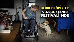 Rehber köpekler 7. Engelsiz Filmler Festivali'nde