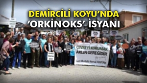 Demircili Koyu'nda 'Orkinoks' isyanı