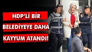 HDP'li bir belediyeye daha kayyum atandı!