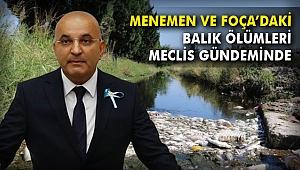 Menemen Ve Foça'daki Balık Ölümleri Meclis gündeminde