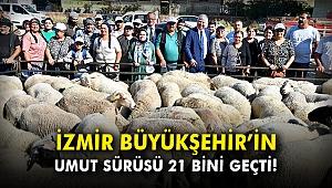 İzmir Büyükşehir'in umut sürüsü 21 bini geçti!