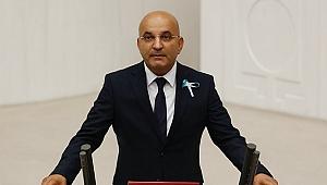CHP'li Polat: İzmir'in güzel doğası enerji santrallerine teslim ediliyor