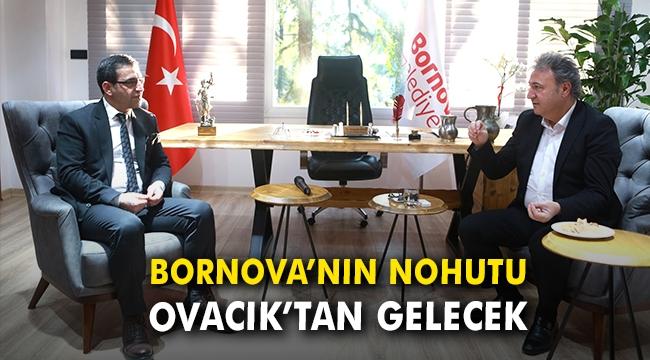 Bornova'nın nohutu Ovacık'tan gelecek