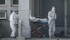 Çin'deki koronavirüs salgınında 56 kişi öldü, enfekte sayısı bin 975'e çıktı