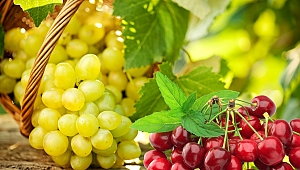 Ege'den yaş meyve sebze ihracatında rekor