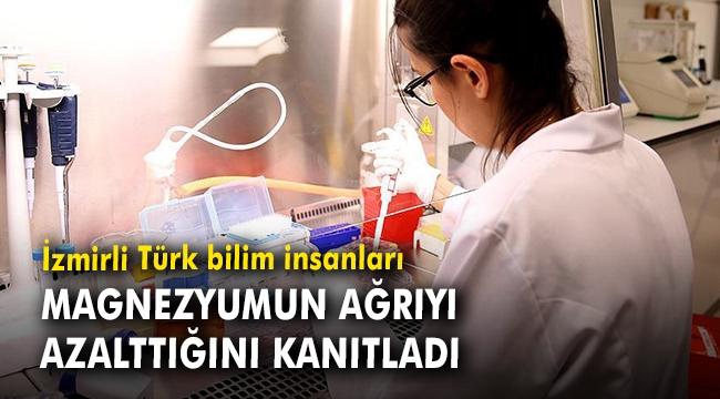İzmirli Türk bilim insanları magnezyumun ağrıyı azalttığını kanıtladı