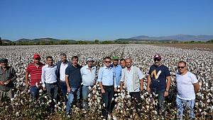 Menemen'de pamuk üreticisine 4 bin tonluk destek