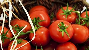 İhracatın yıldızı 'domates' oldu