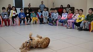 Tarçın, Ego ve Müdür, çocuklara hayvan sevgisi aşılıyor