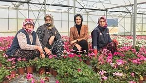 AK Parti İzmir'den bir ilk Kadın çiftçilere