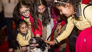 Türkiye'nin en büyük Pet Fuarı İzmir'de başlıyor
