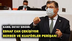 CHP'li Sındır: Esnaf perişan, acil destek şart!