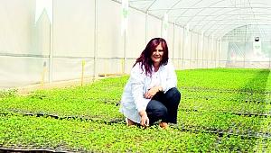İşsizler tarıma yönlendirilmeli yoksa gıda sorunu kapıda