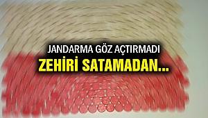 İzmir'de 301 uyuşturucu hap ele geçirildi