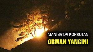 Milli Parkı tehdit eden orman yangını korkuttu!
