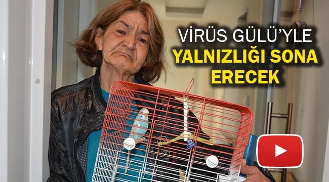 Virüs Gülü'yle yalnızlığı sona erecek