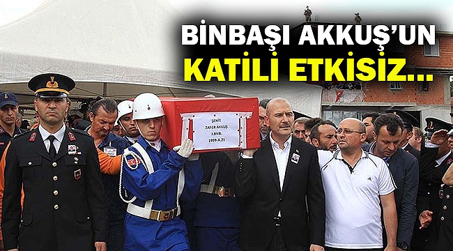 Binbaşı Akkuş'un katili etkisiz hale getirildi...