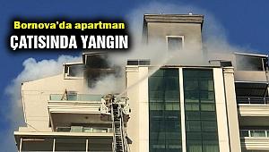 Bornova'da apartman çatısında yangın paniği!