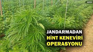 İzmir'de uyuşturucu operasyonu... 4 kişi gözaltına alındı...