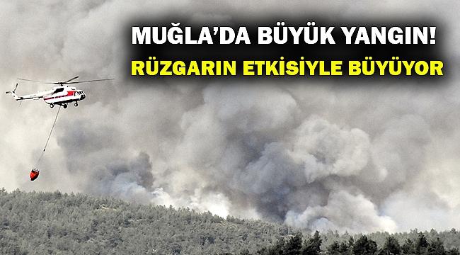 Muğla'da büyük bir orman yangını başladı!