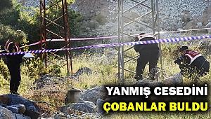 Yüksek gerilim hattında yanmış erkek cesedi... Neden kablo hırsızlığı mı?